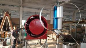 Petit Axe vertical génératrice éolienne de 300 W Turbine pour l'utilisation résidentielle