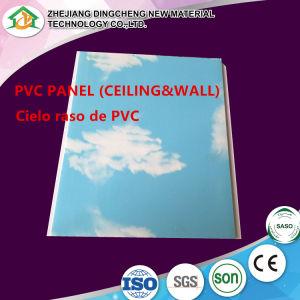 Lichtgewicht Comités RN-215 van de Decoratie van de Muur van de Comités van het Plafond van pvc 10/12'