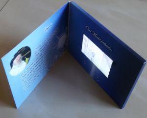 Жк-экран для изготовителей оборудования видео карта