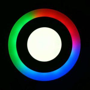LEIDEN Comité die Dubbele RGB Kleur aansteken