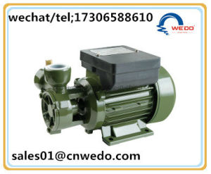 DB125Eléctrico de una bomba de agua potable con la salida de 1 pulgada (0,25 KW).
