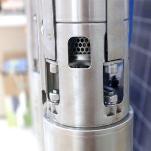 Beste Solarwasser-Pumpe tun ihn sich Solarwasser-Pumpe