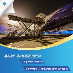Fast Fret Logistique/mer/Ocean Freight/Service de livraison de la Chine à l'Inde et Pakistan