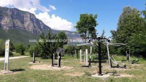 Ginásio Wandeplay Piscina equipamento de fitness com passo de Sky Wd-2021ahg