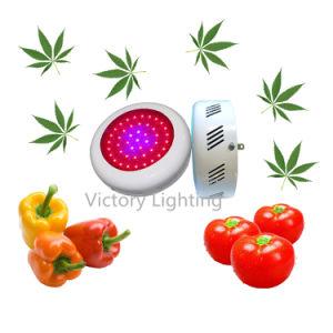 135W Spectrum Hydroponic Lamp LED Plant Grow Lamp Grow Light