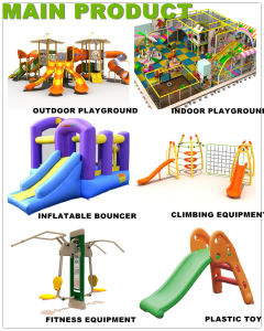 Multi Function Slide & Tube Outdoor Plastic Playground para School com CE Certificate