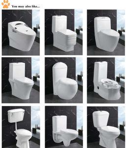 Articoli sanitari della stanza da bagno della vasca da bagno bianca ...