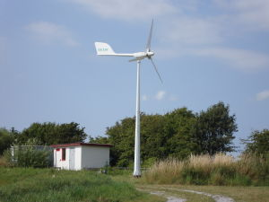 Small Horizontal Axis Wind Turbine for Home Use