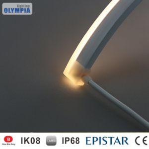 La parete LED coltiva l'illuminazione dell'acquario della striscia LED per la decorazione