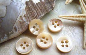 Alta qualidade de fábrica Eco-Friendly Botão Shell Real
