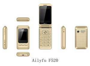 De Mobiele Telefoon van China Clamshell van de lage Prijs met de Dubbele Mobiele Telefoon van de Tik van het Scherm van de Kaart SIM Dubbele