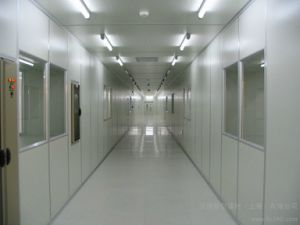 100トンの冷蔵室のプロジェクトの冷蔵室のフリーザー(LAIAO)