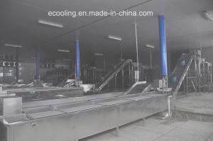 Kundenspezifisches kaltes Lager für Gemüse-Obstverarbeitung-Fabrik