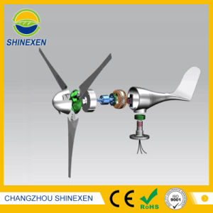 300W 12V 24Vの水平の風力発電機