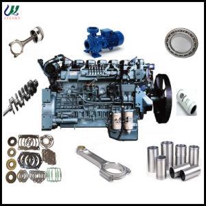 De Dieselmotor Parts van Weichai voor Wd615 van Piston 612700020049