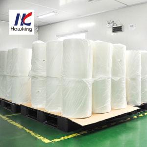 11-Layer PA/EVOH/PP Barrière film gaz Sacs sous vide de thermoformage Co-Extrusion haute barrière Film moulé
