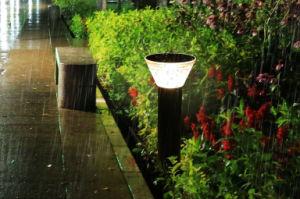 Illuminazione solare dell alberino del cortile dell indicatore