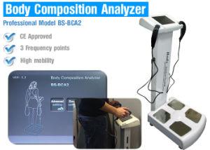 Analizzatori di composizione nell'ente professionale