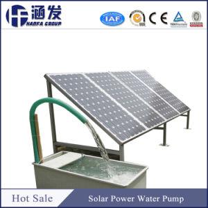 12V CC 24V Sumergible Bomba de agua solar fabricado en China