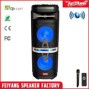 Novo! Molde privado ao ar livre recarregável Bluetooth Alto-falante Carrinho Amplfier Superior - Duplo de 10