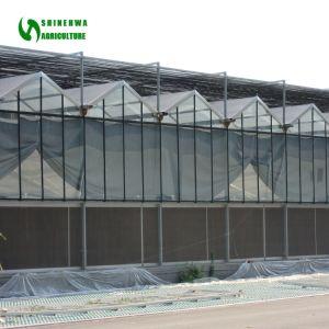ガラス温室-熱いすくいのガラスが付いている電流を通された鋼管の外側カバー