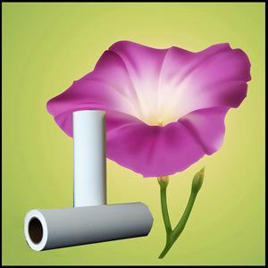 260GSM Premium RC Gloss/Semi-Gloss Inkjet Foto Paper in Rolls