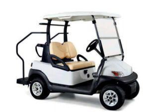 Elevadores eléctricos de mini-Golf Cart Carro Multiuso modelo DS-S2