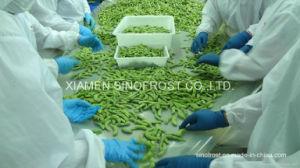 Fagioli della soia di IQF Edamame, fagioli verdi congelati della soia, in baccelli/noccioli/lustrati