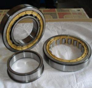 Nup2307 Cojinete de rodillos cilíndricos Tdgs, SKF, NSK, (NUP2308, NUP2309)