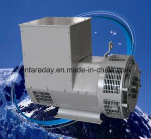 ファラデーブランドの中国ウーシーの工場が付いている電気交流発電機の発電機