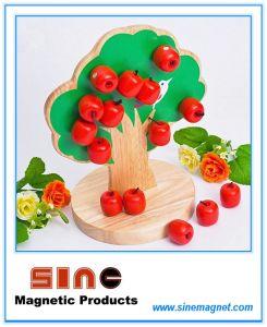 Магнитные деревянная игрушка дерева Apple/игрушка в области образования