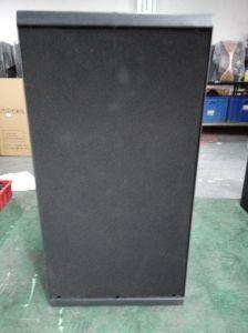 Outdoor 2*10 800W Broche Modèle de matrice de ligne de la case Sound System