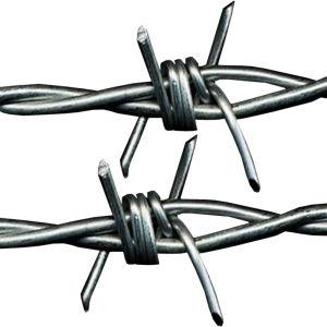 Vendita calda galvanizzata o filo rivestito del PVC per la rete fissa