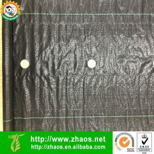 Estrutura da paisagem de PP/ Tapete de plantas daninhas perfuradas para facilitar a utilização de jardinagem