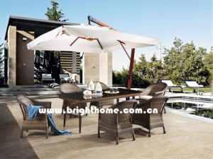 PEの藤の柳細工の屋外の家具Bp3017c