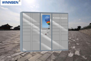 De intelligente Logistische Elektronische Kast van het Pakket van de Kast van het Pakket Elektronische Slimme