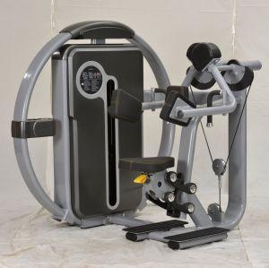 Strumentazione di forma fisica di ginnastica dell'arricciatura del bicipite dei nuovi prodotti Lzx-8007 da vendere