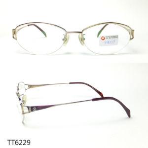 Het Optische Frame van de Glazen van de Lezing van Eyewear van het titanium (TT 6229)