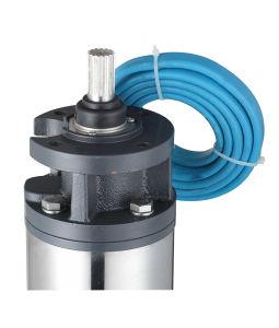 5  pompe profonde électrique de l'eau de puits de grand flux de sortie 60HP