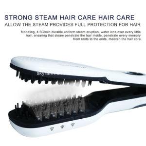 Heißes Verkaufs-Dampf-Haar, das Pinsel-Kamm für Haar-Salon geraderichtet