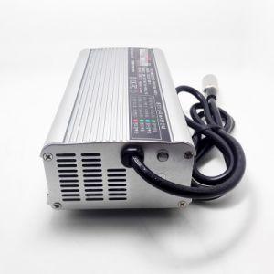 Caricatore universale astuto intelligente automatico pieno 29.4V della batteria al piombo di 24V 10A 11A 12A 13A 14A 15A
