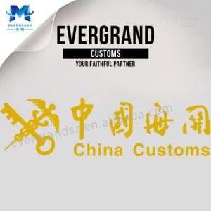 La Cina ha scontato il corriere espresso Serivce da Shenzhen/Guangzhou/Schang-Hai a Los Ageles/New York/S.U.A.