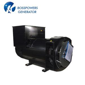 La Chine fournisseurs Boss 314C 200kw Stamford générateur sans balai