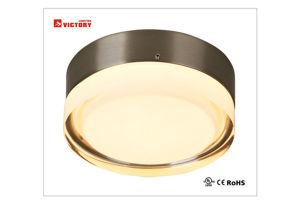 熱い販売の現代新しいデザイン装飾的なLED天井ランプ