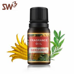 OEM de Natuurlijke Olie van de Geur van de Essentiële Olie van Aromatherapy van de Munt