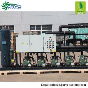 3HP Unidade de condensação do compressor Bitzer Unidade da sala fria a unidade da Cremalheira do Compressor