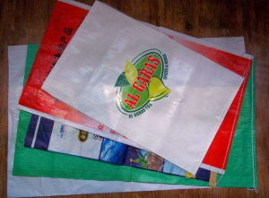 Sac à sac Multi-Color Machine d'impression de sac non tissé