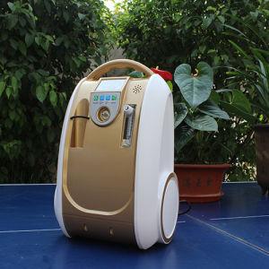 エクスポートのエジプトの電気携帯用酸素のコンセントレイタのオリーブ色の供給