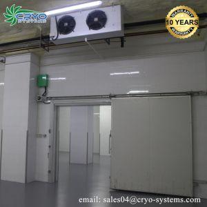 Garantía de calidad de almacenamiento en frío capaz de Distribuidores de bebidas