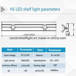 3000-6500K LED de gama de colores con el precio de fábrica de la luz de la etiqueta de estante